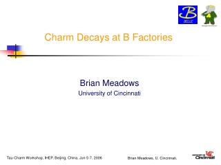Charm Decays at B Factories