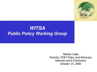WITSA Public Policy Working Group