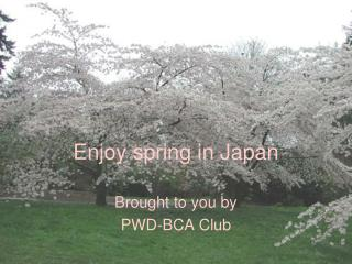 Enjoy spring in Japan