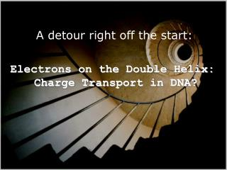 Electrons on the Double Helix:  Charge Transport in DNA?
