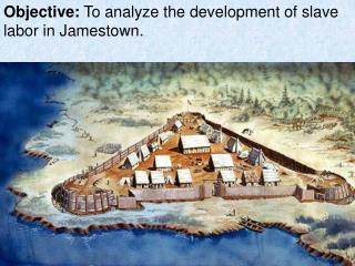 Objective:  To analyze the development of slave labor in Jamestown.