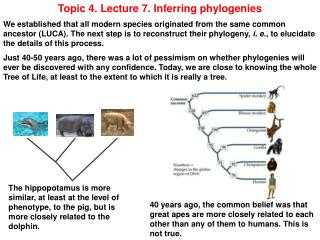 Topic 4. Lecture 7. Inferring phylogenies