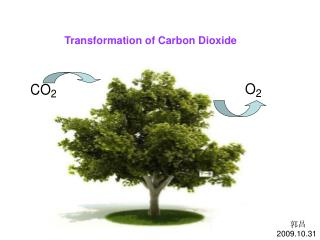 Transformation of Carbon Dioxide
