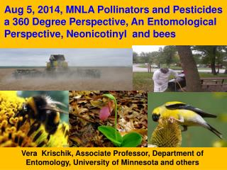 Vera  Krischik, Associate Professor, Department of Entomology, University of Minnesota and others