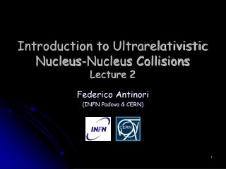 Introduction to  Ultrarelativistic  Nucleus-Nucleus Collisions  Lecture 2