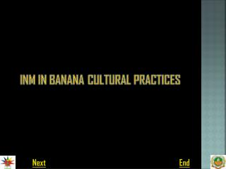 INM IN BANANA CULTURAL PRACTICES