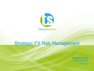 Strategic FX Risk Management