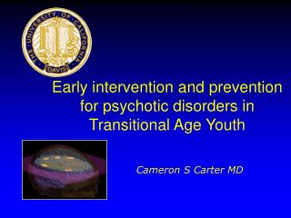 Early intervention and prevention for psychotic disorders in Transitional Age Youth