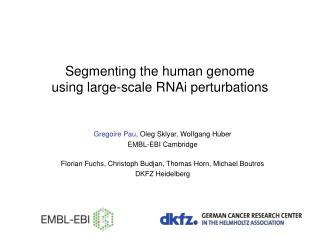 Segmenting the human genome  using large-scale RNAi perturbations