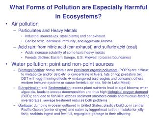 What Forms of Pollution are Especially Harmful in Ecosystems?