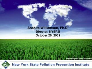 NYS Pollution Prevention Institute