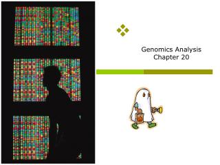 Genomics Analysis Chapter 20