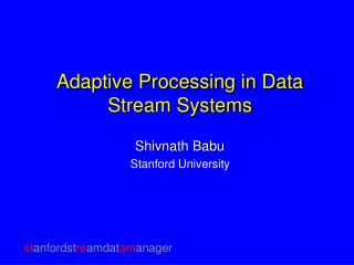 Adaptive Processing in Data Stream Systems