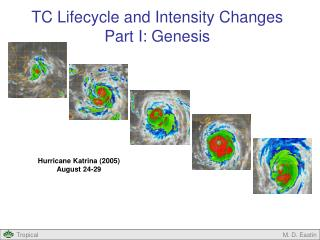 TC Lifecycle and Intensity Changes Part I: Genesis