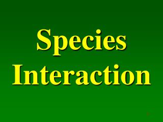 Species Interaction