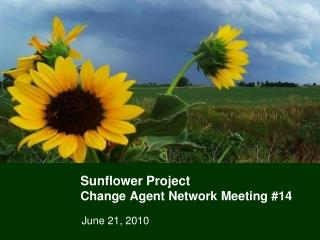 Sunflower Project Change Agent Network Meeting #14