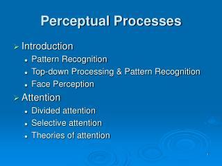 Perceptual Processes
