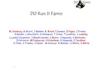 D0 Run II Farms