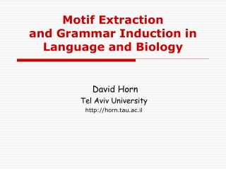 Motif Extraction  and Grammar Induction in Language and Biology