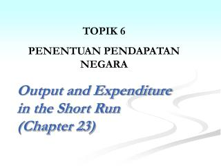Output and Expenditure in the Short Run (Chapter 23)