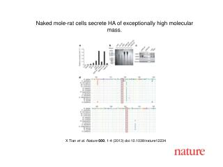 X Tian et al. Nature 000 , 1-4 (2013) doi:10.1038/nature 12234