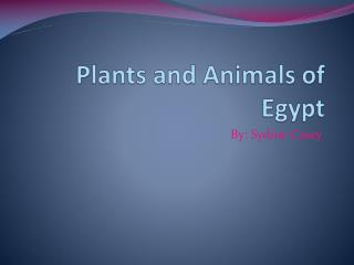 Plants and Animals of Egypt