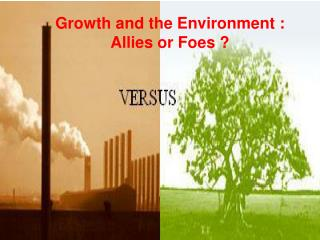 Growth and the Environment : Allies or Foes ?