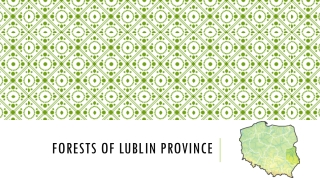 Forests of Lublin province