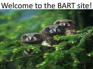 Welcome to the BART site!