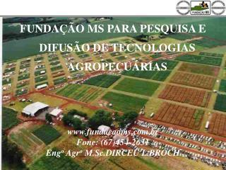 FUNDAÇÃO MS PARA PESQUISA E DIFUSÃO DE TECNOLOGIAS AGROPECUÁRIAS fundacaoms.br