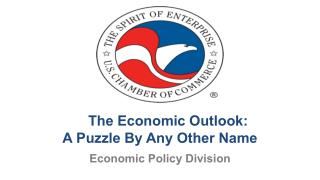 The Economic Outlook:  A Puzzle By Any Other Name