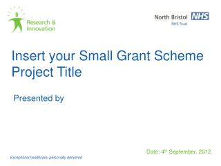 Insert your Small Grant Scheme Project Title