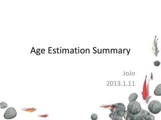 Age Estimation Summary
