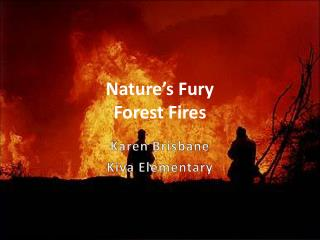 Nature's Fury Forest Fires