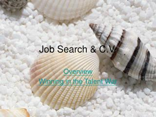 Job Search & C.V.