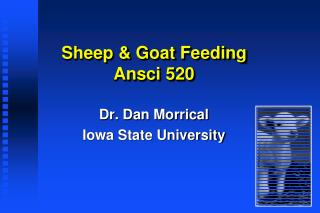 Sheep & Goat Feeding Ansci  520