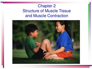 Chapter 2 Structure of Muscle Tissue  and Muscle Contraction