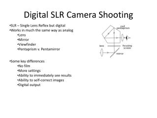 Digital SLR Camera Shooting