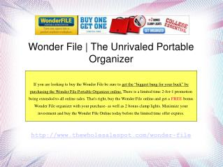 Wonder File Portable Workstation