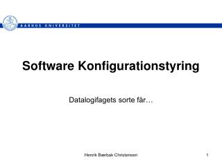 Software Konfigurationstyring
