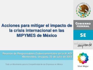 Acciones para mitigar el impacto de la crisis internacional en las MIPYMES de México