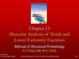 Chapter 13 Muscular Analysis of Trunk and Lower Extremity Exercises