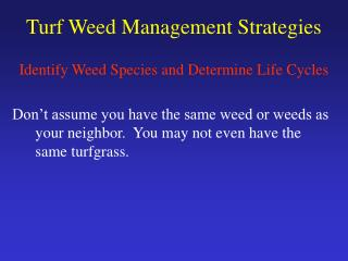 Turf Weed Management Strategies
