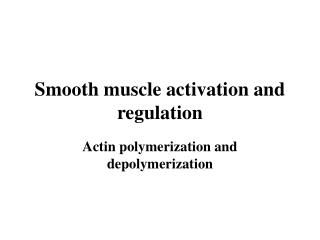 Smooth muscle activation and regulation