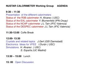 NUSTAR CALORIMETER Working Group AGENDA 9:30 – 11:30 Presentation  of the different calorimeters