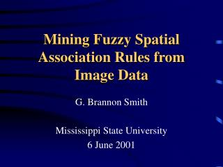 Mining Fuzzy Spatial Association Rules from Image Data
