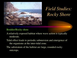 Field Studies: Rocky Shore