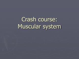 Crash course:   Muscular system