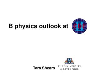 B physics outlook at