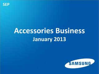 Accessories Business  January 2013